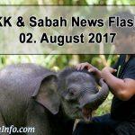 Baby Elephant - Wildlife Rescue Unit