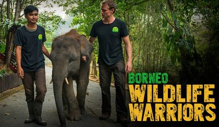 Borneo Wildlife Warriors Season 2