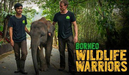 Borneo Wildlife Warriors Season 2