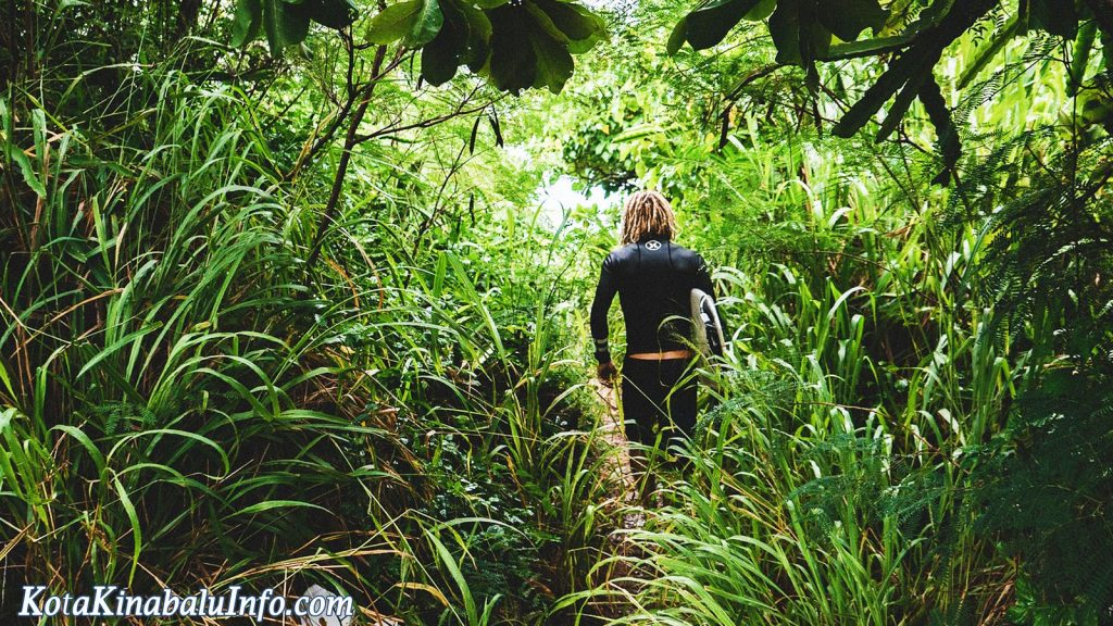 trekking in Kota Kinabalu