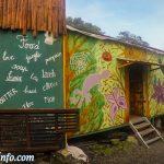 Jungle Jack - Backpackers Lodge