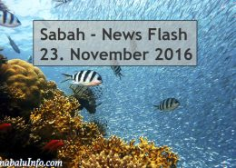 Sabah News Flash - 23. November 2016