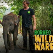 The Borneo Wildlife Warriors