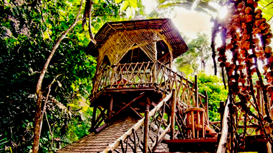 Bunga Raya Island Resort-view tree house