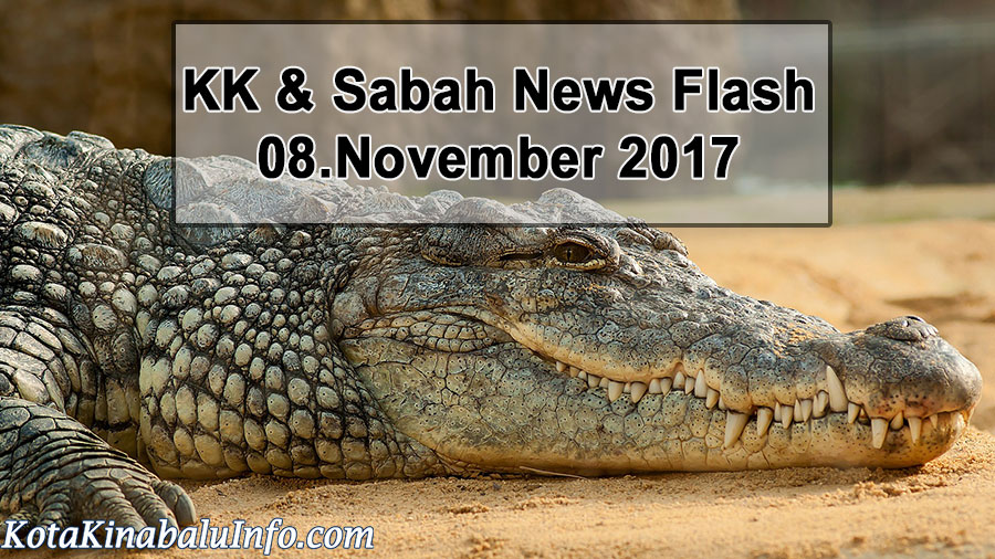 Bruneian Crocodile Hunter to Hold Shows Abroad