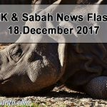Malaysia's Last Living Sumatran Rhino Sick